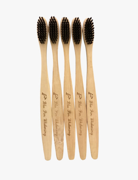Bamboo Toothbrushes 2 Pack