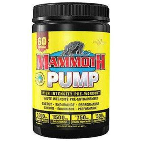 Mammoth Pump Hd 540g