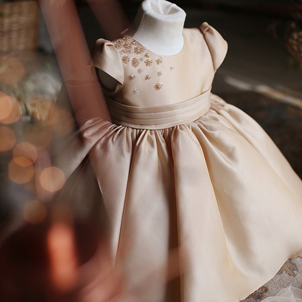 Cap Sleeves Embroidered Princess Dress