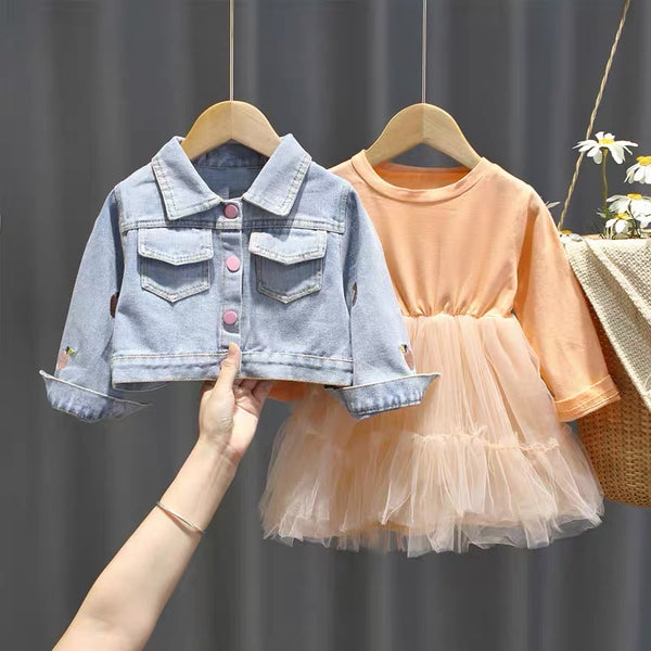 Strawberry Denim Jacket And Net Dress