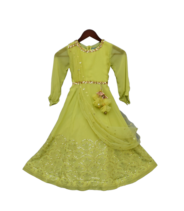 Light Green Embroidery Georgette Anarkali
