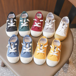 Colored Canvas Shoes