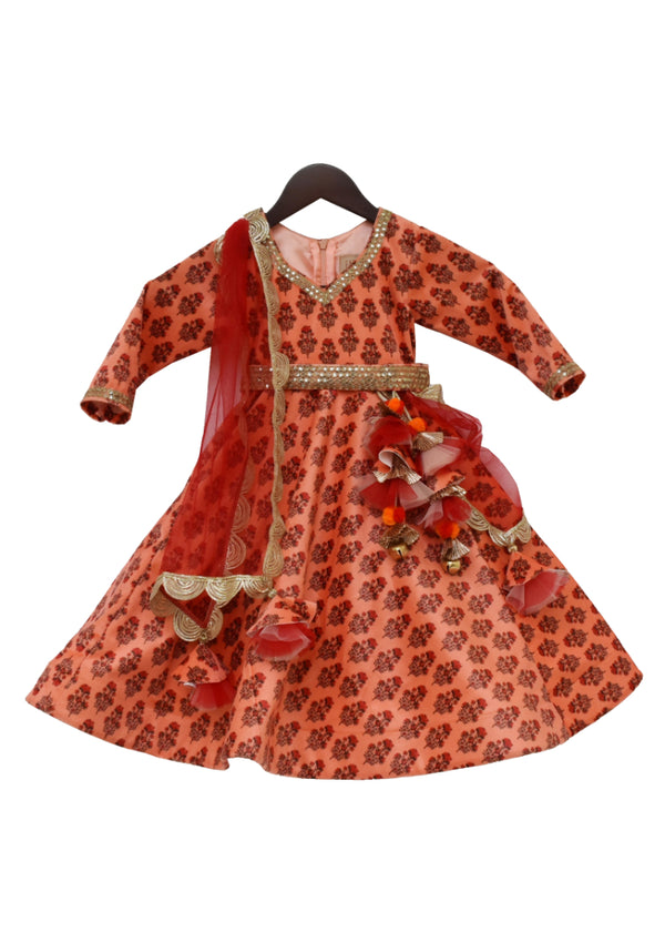 Orange Velvet Printed Anarkali