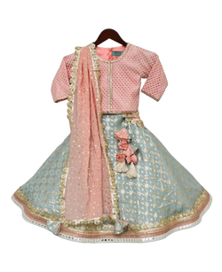 Peach Embroidery Choli with Lehenga