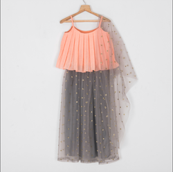 Peach Box Pleated Top With Grey Beaded Lehenga And Dupatta