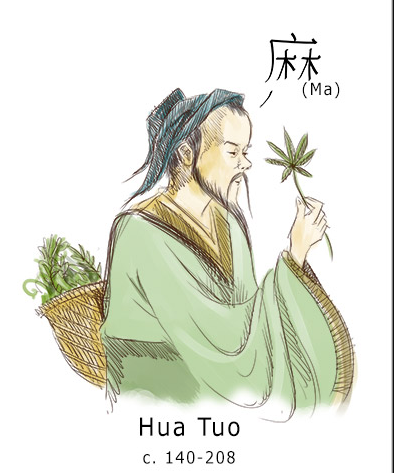 Chinese doctor Hua Tua mixed wine &cannabisin order to use it as an anesthetic