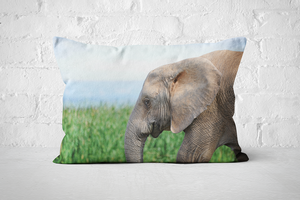 African Wildlife 12 | Pillow Rectangle - But Why Not