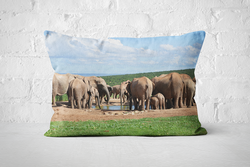 African Wildlife 14 | Pillow Rectangle - But Why Not