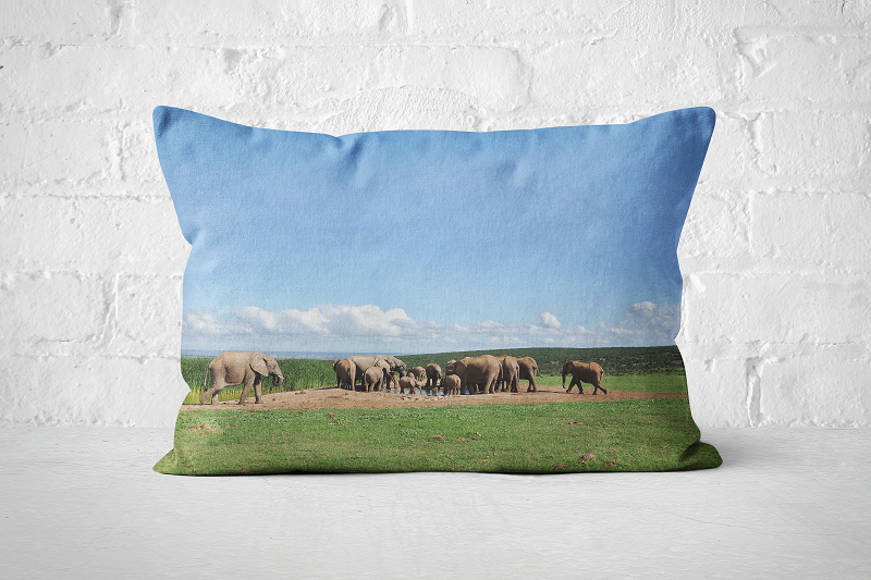 African Wildlife 15 | Pillow Rectangle - But Why Not