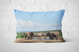 African Wildlife 16 | Pillow Rectangle - But Why Not