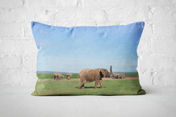 African Wildlife 17 | Pillow Rectangle - But Why Not