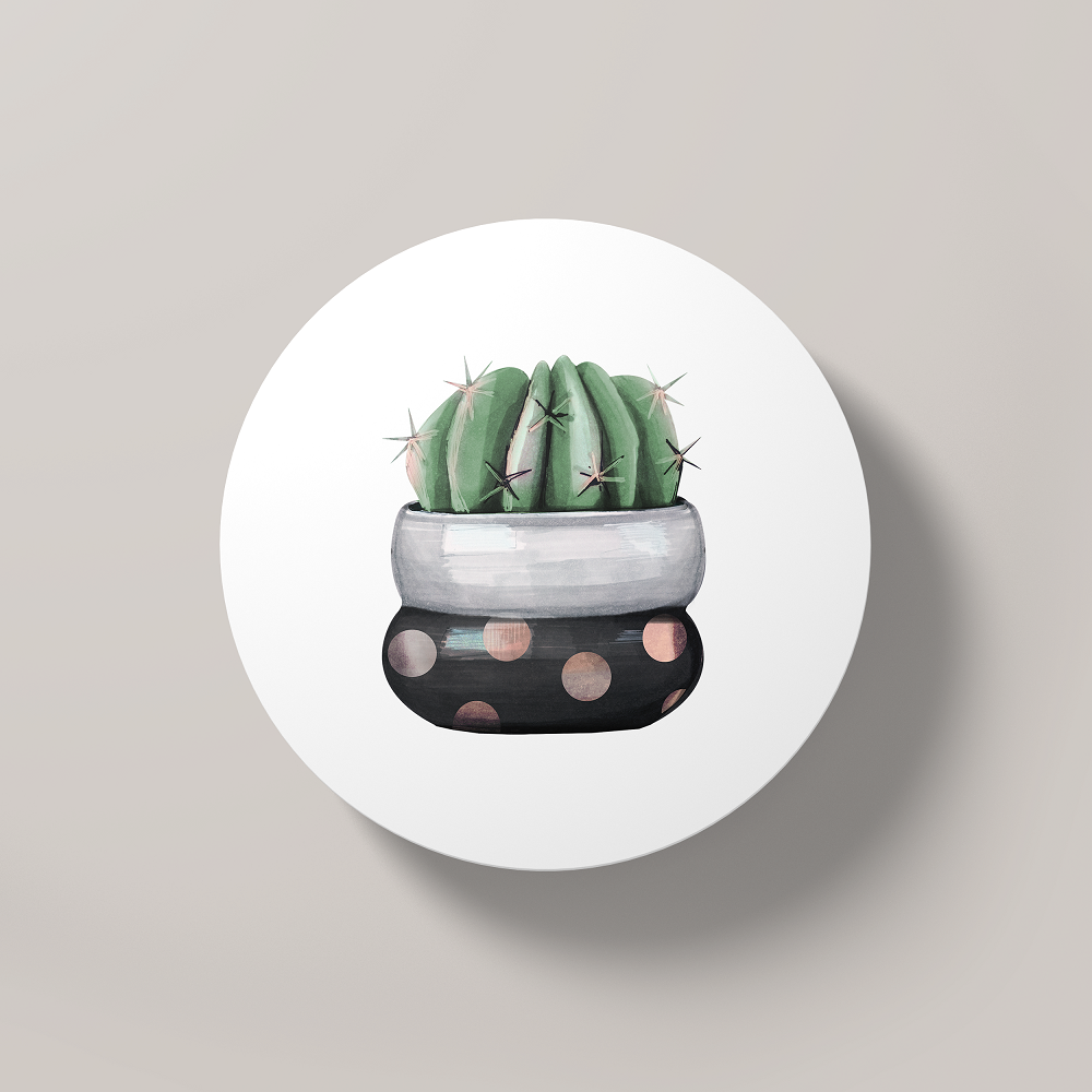 Cacti Party 18 | Round Coaster - But Why Not