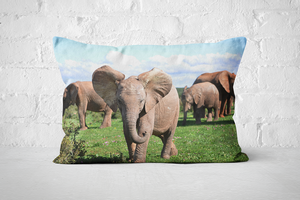 African Wildlife 18 | Pillow Rectangle - But Why Not