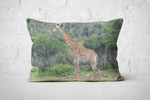 African Wildlife 20 | Pillow Rectangle - But Why Not
