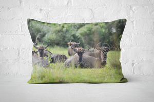 African Wildlife 21 | Pillow Rectangle - But Why Not