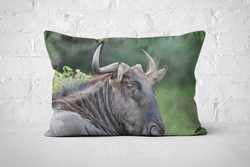 African Wildlife 22 | Pillow Rectangle - But Why Not