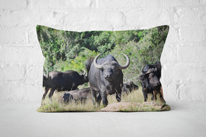 African Wildlife 23 | Pillow Rectangle - But Why Not
