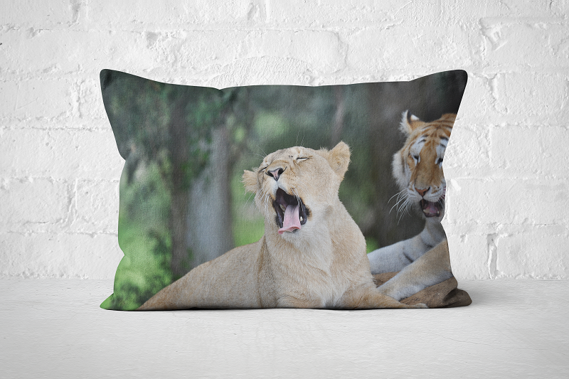 African Wildlife 27 | Pillow Rectangle - But Why Not