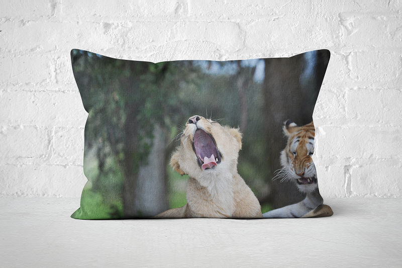 African Wildlife 28 | Pillow Rectangle - But Why Not