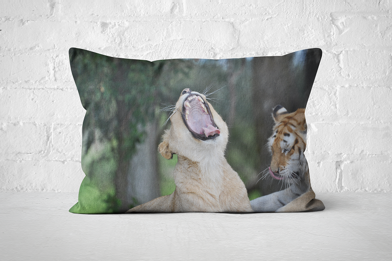 African Wildlife 29 | Pillow Rectangle - But Why Not