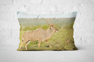African Wildlife 2 | Pillow Rectangle - But Why Not