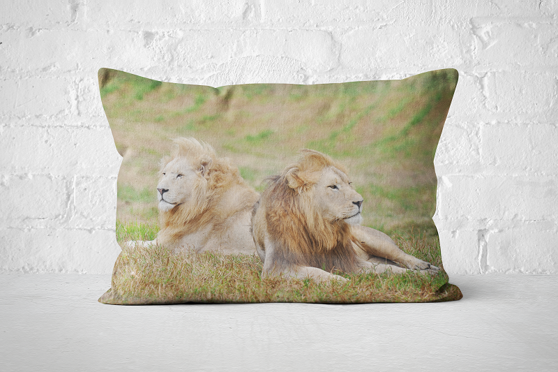 African Wildlife 32 | Pillow Rectangle - But Why Not