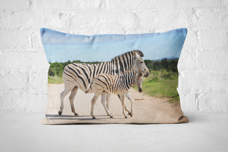 African Wildlife 39 | Pillow Rectangle - But Why Not