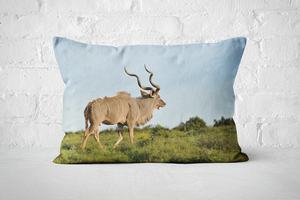 African Wildlife 3 | Pillow Rectangle - But Why Not