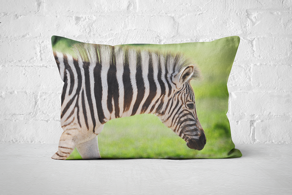 African Wildlife 41 | Pillow Rectangle - But Why Not