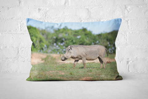 African Wildlife 44 | Pillow Rectangle - But Why Not
