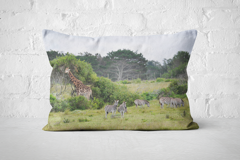 African Wildlife 45 | Pillow Rectangle - But Why Not