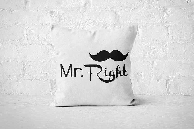 Mr Right | Pillow - Square - But Why Not