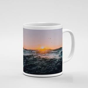 Mug - But Why Not