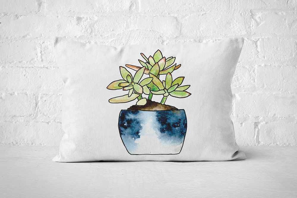 Succulent 2 | Pillow Rectangle - But Why Not