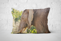 African Wildlife 6 | Pillow Rectangle - But Why Not