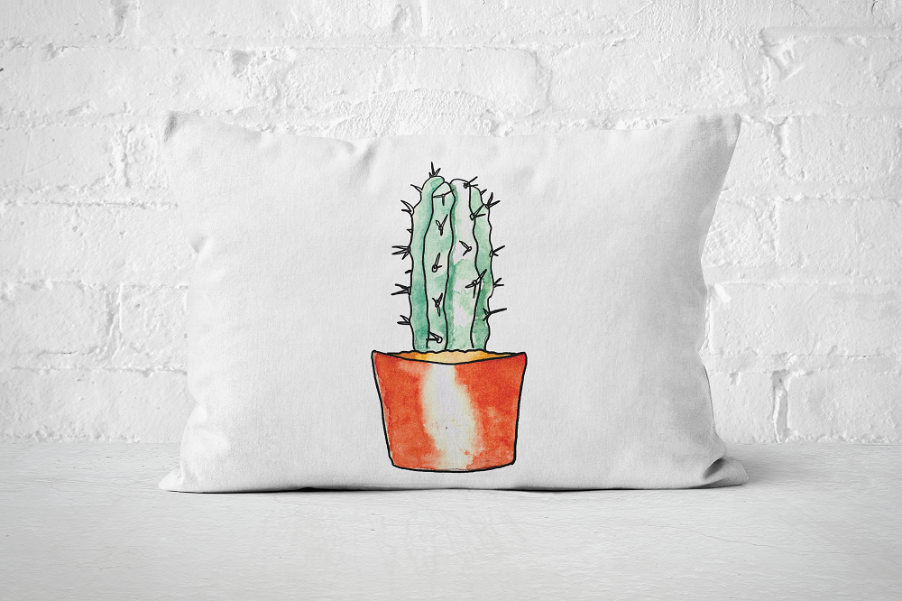 Succulent 16 | Pillow Rectangle - But Why Not