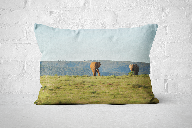African Wildlife 7 | Pillow Rectangle - But Why Not