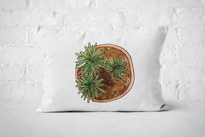 Succulent 22 | Pillow Rectangle - But Why Not