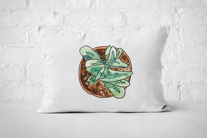 Succulent 23 | Pillow Rectangle - But Why Not