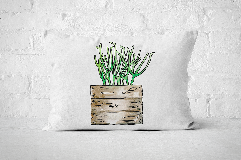 Succulent 25 | Pillow Rectangle - But Why Not