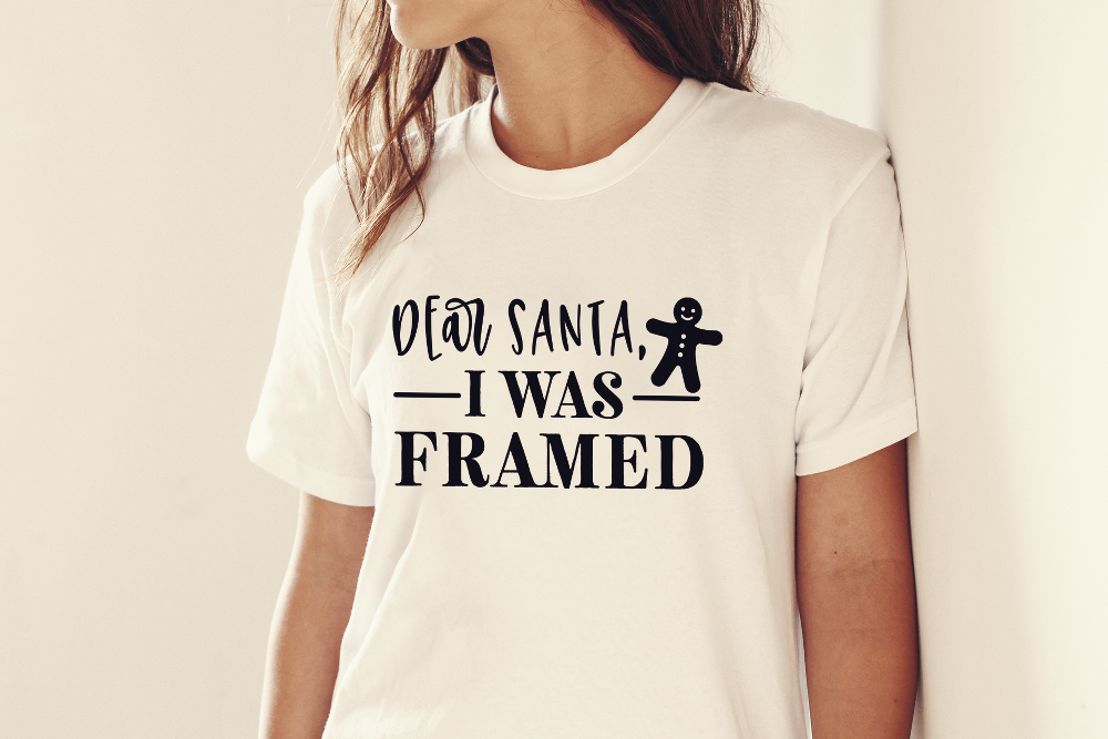 I was Framed | Adult T-shirt