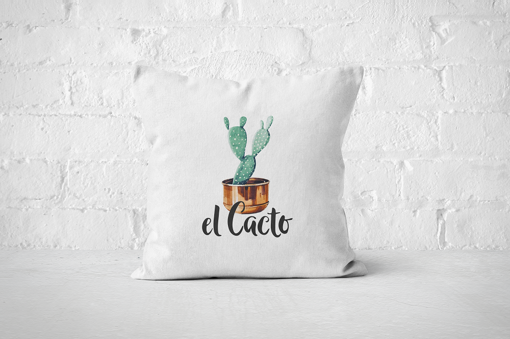 El Cacto | Pillow Cover - But Why Not