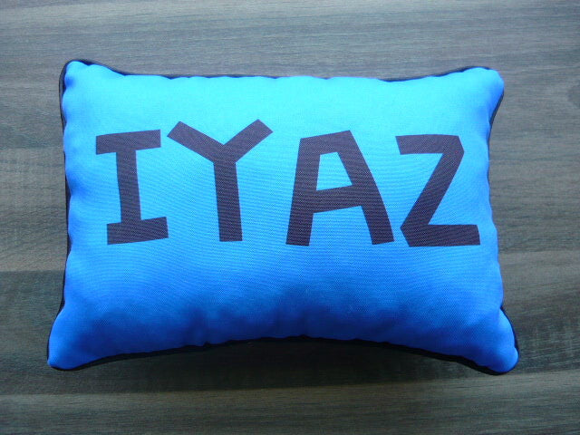 A4 Rectangle Pillow - Custom - But Why Not