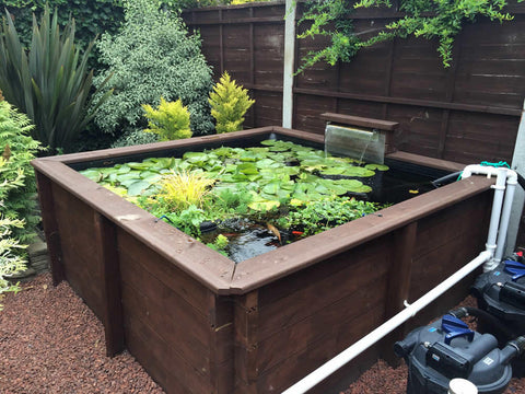 2m square raised timber pond - Plants for Ponds