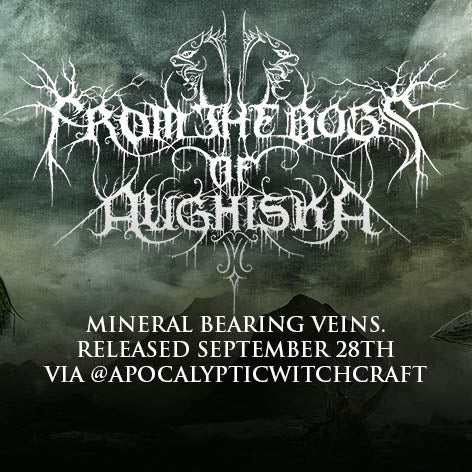 "From The Bogs Of Aughiska's new album ""Mineral Bearing Veins"" is up for PRE ORDER now!"