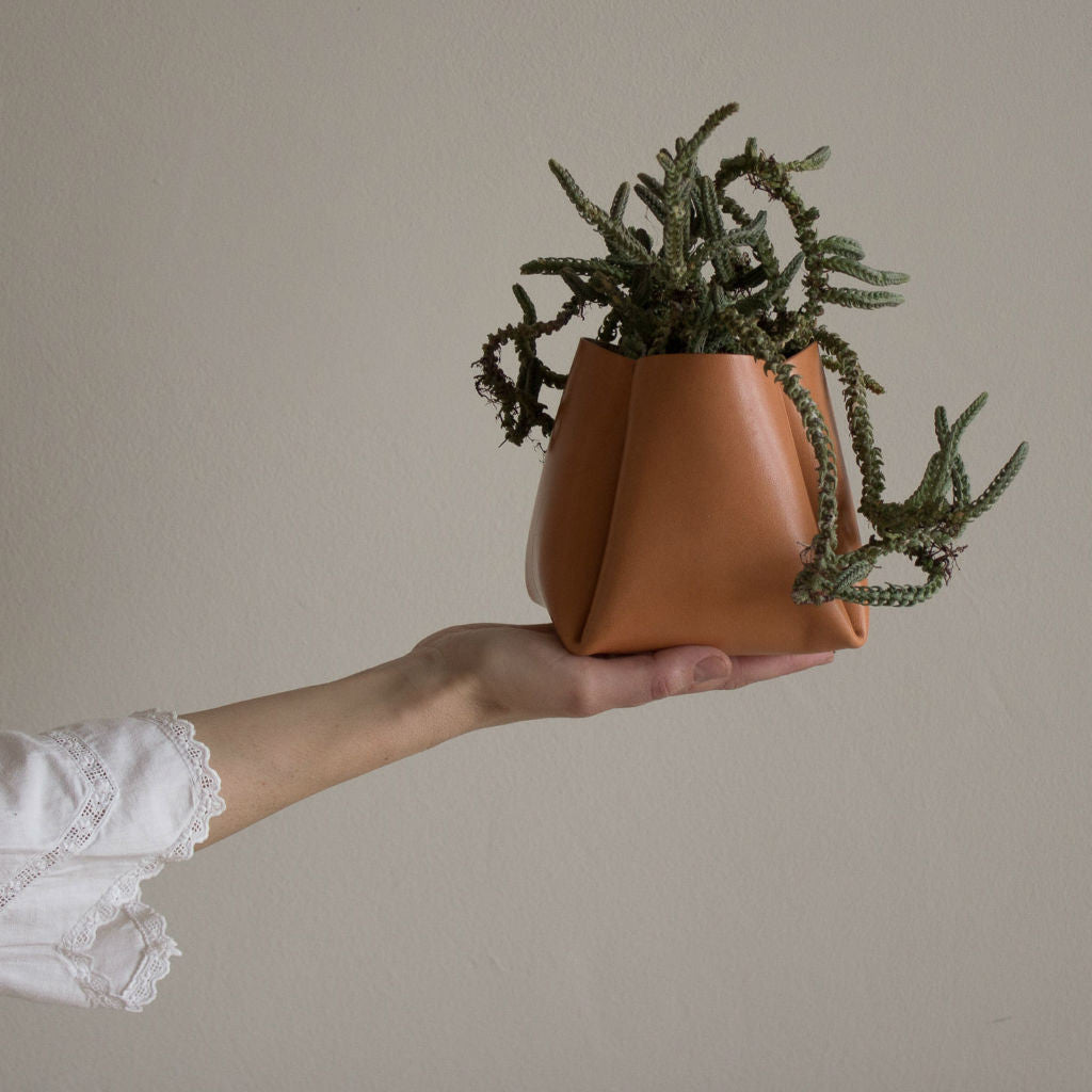 Model holding a tanned leather pot with a cactus
