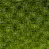 parana green bookcloth