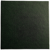 jungle green faux leather covering for portfolio and boxes