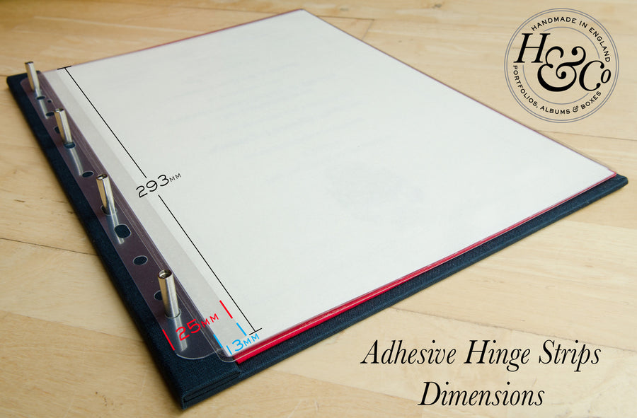 Hinge and File Strips (10 per pack)