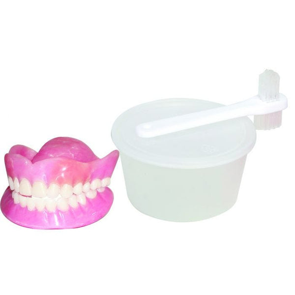 Dentures w/Denture Cup and Lid